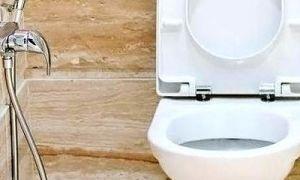 Гигиенический душ — сооружения и подробная инструкция