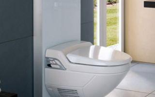 Что такое инсталляция для унитаза в туалете, схема