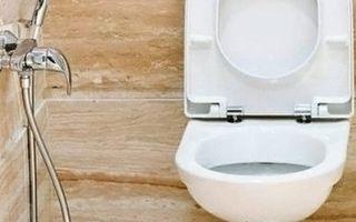 Какой гигиенический душ лучше подойдет для унитаза со смесителем — полезные советы от экспертов